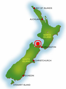 Forsyth Island on the map of New Zealand